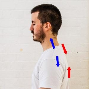 images posture équilibrer tonus
