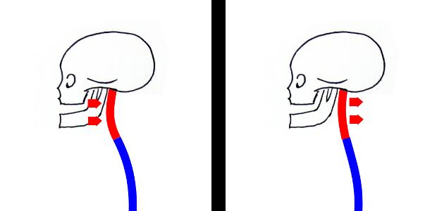 images posture nuque arrière