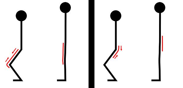 hanches genoux schema