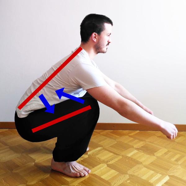 force de compression dans les squats