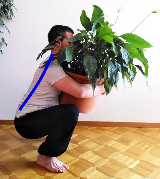 alignement du dos pour les squats