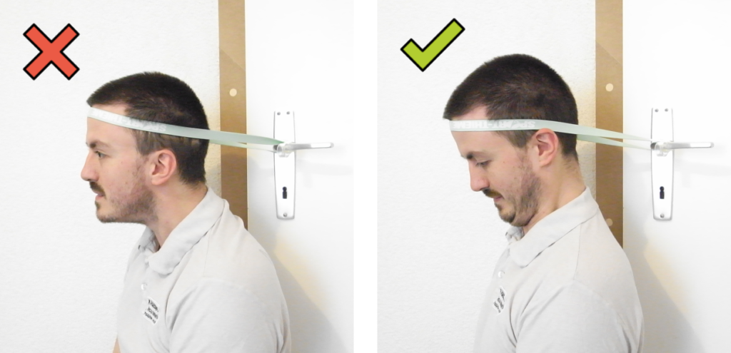 Position correct pour le renforcement dynamique des muscles fléchisseurs de la nuque